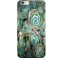 Green Succulents iPhone Case/Skin