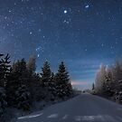 Blue Night by Mikko Lagerstedt