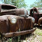 A pair of Fords at Ravenswood by DashTravels