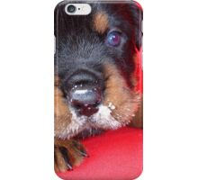 Comical Rottweiler Puppy With Food On Snout iPhone Case/Skin