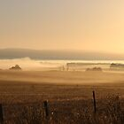 dawn - in Tasmania by gaylene