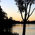 River Murray at Dusk by Cindy Hitch