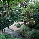 Zen Garden #3 - Drôme - France by PB-SecretGarden