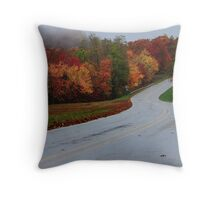 Sometimes Life Slips You A Curve Throw Pillow