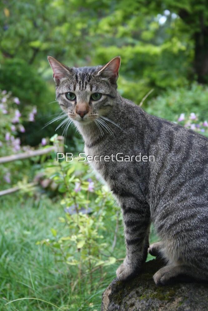 Cat in a Zen Garden #9 - Drôme - France by PB-SecretGarden