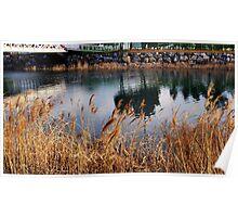 Reflective lake  Poster