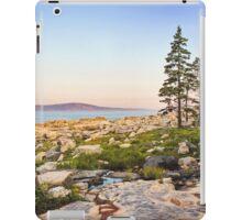 Sunrise Landscape In Maine iPad Case/Skin
