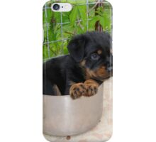 Puppy Rottweiler Curled Up In Food Bowl iPhone Case/Skin