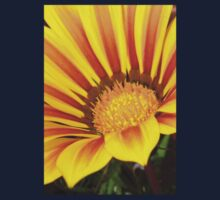 Orange and Rust Color Gazania Montezuma Macro Kids Tee