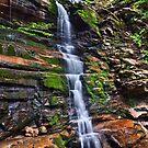 Ganoga Falls by Marty Straub