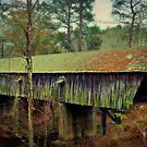 Concord Bridge, Smyrna, Georgia by Scott Mitchell