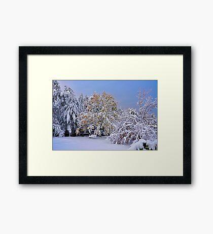 When Seasons Collide Framed Print