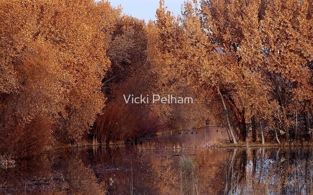 Peaceful Beginnings by Vicki Pelham