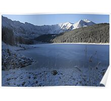 Snowy mountains Co. Poster