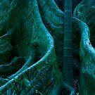 Botanical Altruism by ein22