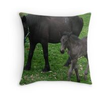 Mare & Foal Draft Horses  Throw Pillow