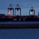 MSC Claudia docked by AndreCosto