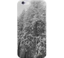 Grey Snowy Trees iPhone Case/Skin