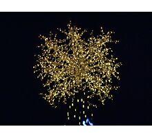 Capitol Tree Star Photographic Print