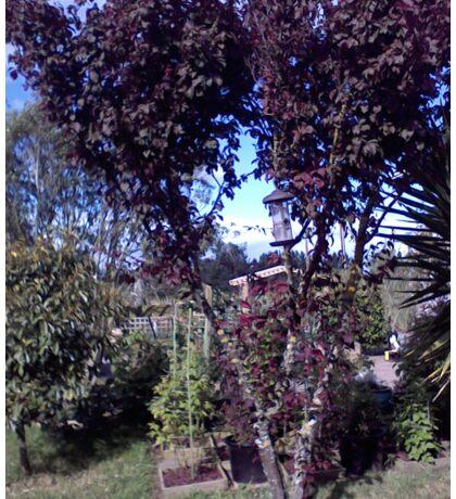 Mum's Garden - cherry tree Sticker