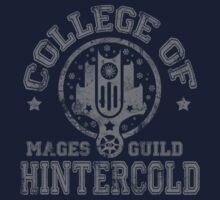 College of Hintercold - Grey T-Shirt