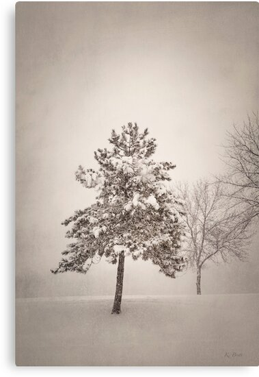 Winter - Moody by KBritt