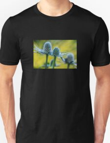 Spiny Dancer T-Shirt