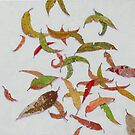 LEAVES by Cary McAulay