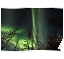 Yukon Northern Lights 1 Poster