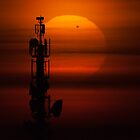 Transit of Venus by Phil Hart