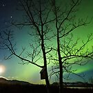 Yukon Northern Lights 2 by Phil Hart