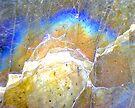 Blue Dawn (Labradorite) by Stephanie Bateman-Graham