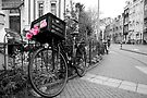 Bike, Amsterdam by Nicholas Coates