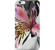 Alstomeria iPhone Case/Skin