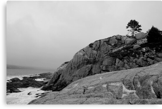 Scotian Coast by Mark Theriault