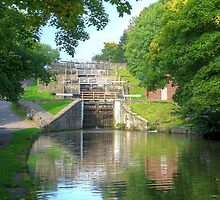 Bingley Five Rise Locks Yorkshire 3 by Colin  Williams Photography