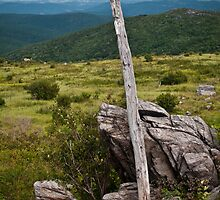 Appalachian Trail Marker in Grayson Highlands State Park, Virginia. by jeastphoto