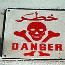 Danger ! by Susan  Bloss