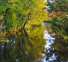 Fall colors reflected along the Red Cedar River by DArthurBrown