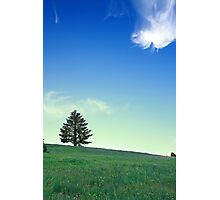 Dancing cloud and a lone tree Photographic Print