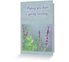 Speedy Recovery Greeting Card - Purple Loosestrife Wildflower Greeting Card