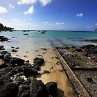 Mauritius - The Railroad by mattnnat