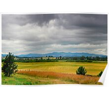 Willamette Valley Poster