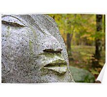 Granite Face  Poster