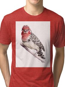 Red-and-yellow Barbet Tri-blend T-Shirt