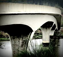 Slow Down, Curves Ahead...Between Coos Bay and Coquille, Oregon by trueblvr
