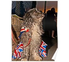 Great British Pooch Poster