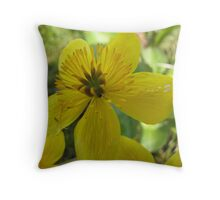 Beautiful buttercup in nature Throw Pillow