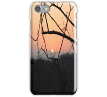 Hot African veld fire iPhone Case/Skin