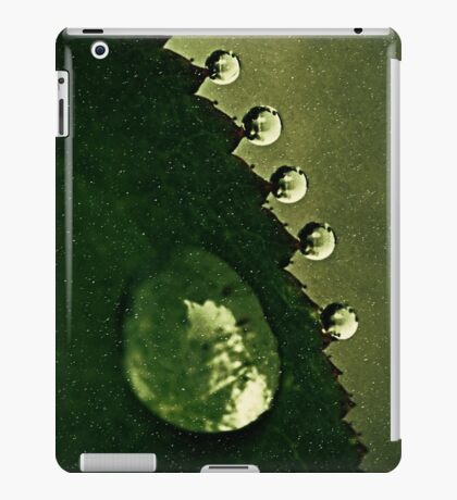 Leaf Drops iPad Case/Skin